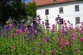 klostergarten-in-brunn-reuters