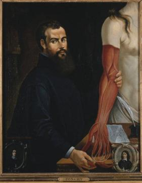 Andreas-Vesalius